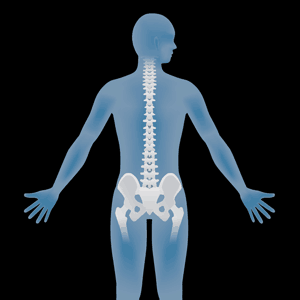Block Therapy Straight Spine Square